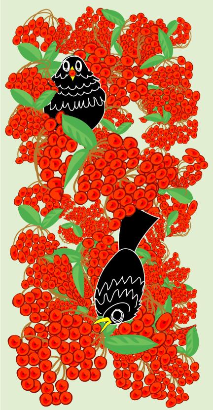 black birds and piracanthus