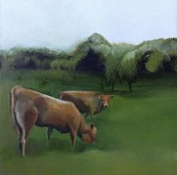 FC Heathorn | Staring Cow