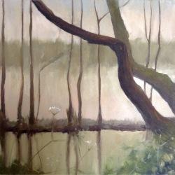 FC Heathorn | Misty Lake Trees