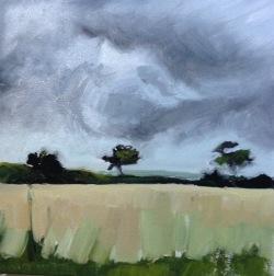 FC Heathorn | Storm Corn Field